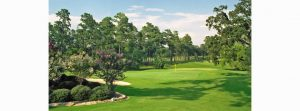 ISM-Houston 2020 Golf Tournament @ Cypresswood Golf Club | Spring | Texas | United States