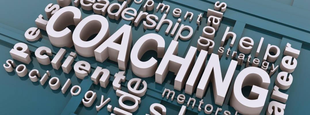 Coaching Presentation by Matt Bradshaw March 2020 PDM Networking meeting